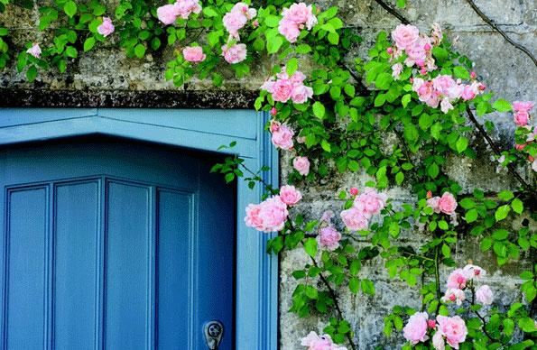 Farrow & Ball Außenfarbe Blau