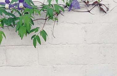 Farrow & Ball Exterior Masonry Fassadenfarbe